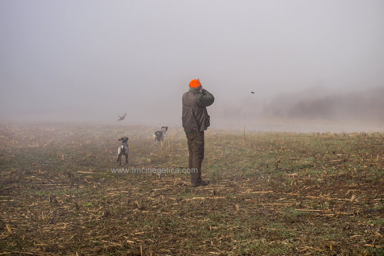 caza en rumania (16)