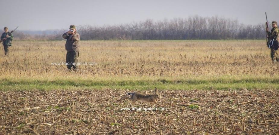 caza en rumania (19)