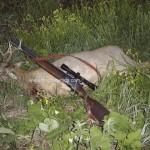 caza en rumania (36)