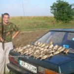 caza en rumania (43)