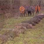 caza en rumania (58)