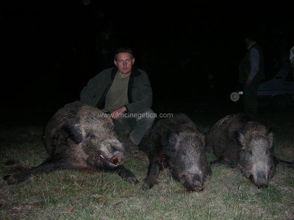 caza en rumania (6)
